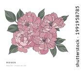 hand draw vector tea rose...   Shutterstock .eps vector #1991958785