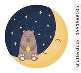 cute brown sleeping bear. night ... | Shutterstock .eps vector #1991969105
