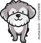 cute norfolk terrier dog...   Shutterstock .eps vector #1992415808