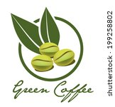 green coffee illustration vector | Shutterstock .eps vector #199258802