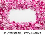 Frame Made Of Beautiful Pink...
