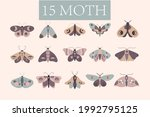 Luna Moth Style Pack Butterfly...