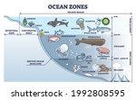 ocean zones division with depth ... | Shutterstock .eps vector #1992808595