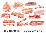 set of raw or smoked bacon...   Shutterstock .eps vector #1992874148