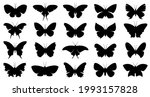collection of vector butterfly...   Shutterstock .eps vector #1993157828