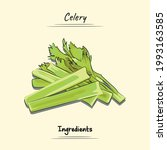 celery illustration sketch and...   Shutterstock .eps vector #1993163585
