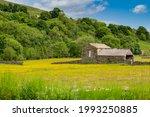 Muker Hay Meadows In Summer...