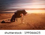 exhausted wanderer | Shutterstock . vector #199366625