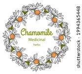 chamomile  medicinal herbs ... | Shutterstock .eps vector #1994365448