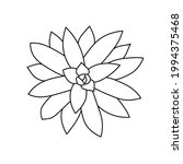 succulent echeveria agavoides... | Shutterstock .eps vector #1994375468