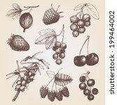 vector set of ink  hand drawn... | Shutterstock .eps vector #199464002