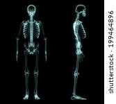 x ray full body of skeleton in... | Shutterstock . vector #199464896