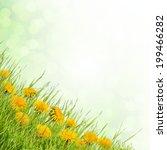 field of flowers and grass ...   Shutterstock . vector #199466282