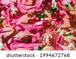 Variegated Flowering Of Verbena ...