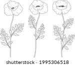 poppies flowers graphics black...   Shutterstock .eps vector #1995306518
