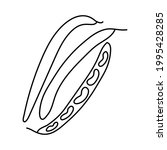 bean. vegetable sketch. thin... | Shutterstock .eps vector #1995428285
