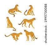 cheetah collection. vector... | Shutterstock .eps vector #1995730088