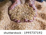 Real Traditional Farmer Hands...