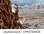 Beach In Brittany With A Rusty...