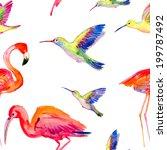 watercolors birds seamless... | Shutterstock . vector #199787492