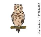 owl specie as nocturnal bird of ...   Shutterstock .eps vector #1997894102