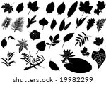 illustration with different... | Shutterstock .eps vector #19982299