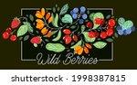 wild berries fresh and ripe...   Shutterstock .eps vector #1998387815