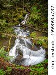 Small photo of River waterfall in the forest. River stream in forest. Forest stream view. River stream
