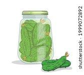 vector pickles jar illustration....   Shutterstock .eps vector #1999072892