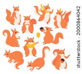 Squirrel Illustration Set....