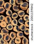 Small photo of Round woods shameless pattern background image