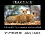 motivational poster   teammate  ... | Shutterstock . vector #200145386