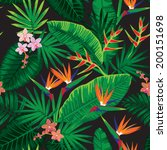 seamless tropical jungle floral ... | Shutterstock .eps vector #200151698