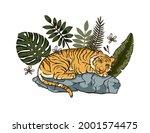 jungle cartoon tropical bengal... | Shutterstock .eps vector #2001574475