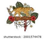 jungle cartoon tropical bengal... | Shutterstock .eps vector #2001574478