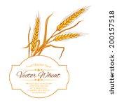 ears of wheat on white...   Shutterstock .eps vector #200157518