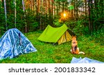 Small photo of A shepherd dog at a tent camp in the forest. Dog in campground. Dog in forest camping