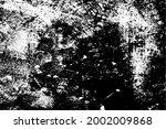 black and white background.... | Shutterstock .eps vector #2002009868