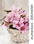 alstroemeria flowers  peruvian... | Shutterstock . vector #200246585