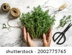 hands tie bouquet of fresh... | Shutterstock . vector #2002775765