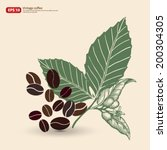 new coffee bean with leaf... | Shutterstock .eps vector #200304305