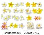 Stock photo frangipani flower isolated on white background 200353712