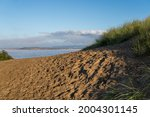 Sand Dunes At Instow Beach In...