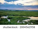 USA, Maryland, Assateague Island, marsh near lighthouse