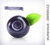 blueberry  vector illustration | Shutterstock .eps vector #200500112
