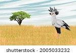 the secretary bird sagittarius... | Shutterstock .eps vector #2005033232