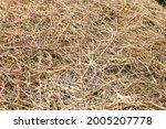 Dried Grass. Hay In Summer....