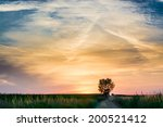 magical sunrise with tree | Shutterstock . vector #200521412