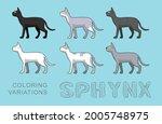 cat sphynx coloring variations...   Shutterstock .eps vector #2005748975