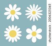 white daisy chamomile flower...   Shutterstock .eps vector #2006325365